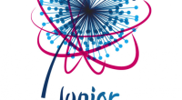 The official logo of Junior Eurovision 2015